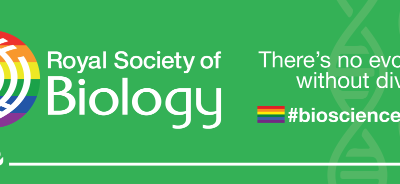Lifting the curtain – in celebration of LGBTQ+ scientists' visibility